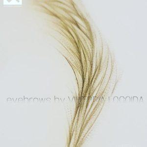 viktoria-logoida-sopracciglia-pelo-a-pelo-cheveux-46