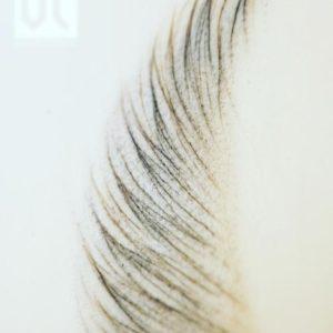 viktoria-logoida-sopracciglia-pelo-a-pelo-cheveux-59