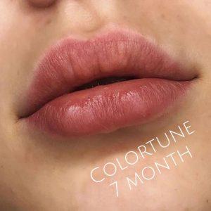 colortune 7 mesi
